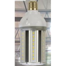 LED General Purpose Lamps